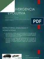 CONVERGENCIA EVOLUTIVA
