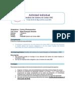 Actividad individual con rúbrica.pdf