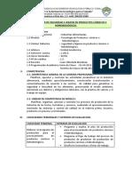 SILABO MODULAR DE SEGURIDAD E HIGIENE EN PRODUCTOS CÁRNICOS E HIDROBIOLÓGICOS.docx