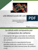Componentes Quimicos de Las Celulas