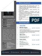 Professional CV Aditya