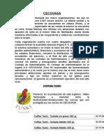 Informe Del Cafe