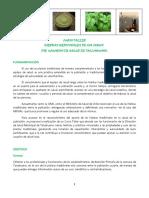 Hierbas Medicinales.pdf