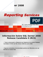 reportingservices-1217610828378574-8.ppt