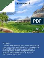 presentasi jaringan dasar 2