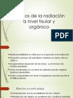 Efectos de La Radiación a Nivel Tisular y Órganos