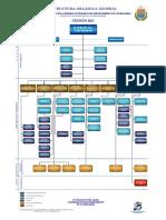Estructura Organica General
