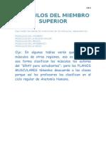Musculos Miembro Superior (Inserciones)