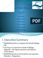 Rabbit Fish Pond (Powerpoint)