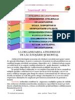 T1 Organizarea atelierului.pdf