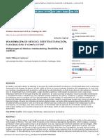 Volkswagen de México_ Reestructuración, Flexibilidad y Conflictos
