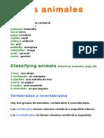 Unit 3 Animals