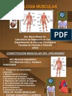 Fisio Muscular