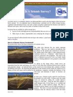 What is Seismic Survey.pdf