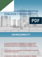 Presupuestos Publicos y Privados (1)