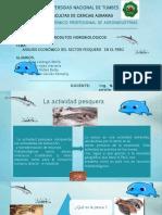 analisis economico del sector pesquero en el peru.pptx