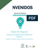 Guia Plan de Negocios-con Ejemplos y Modificada
