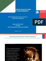 3 - Reportabilidad de Recursos y Reservas - O. Cortes - Sernageomin