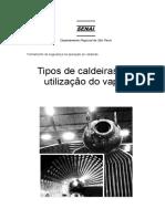 102_Tipos de caldeiras e a utilização do vapor.pdf