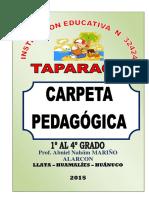 CARPETA PEDAGOGICA-2015
