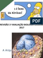 Revisão 1a. Avaliação Biologia Celular