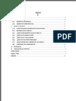 Informe Encendido Foco Con Scr (1)
