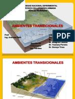 ambientes transicionales