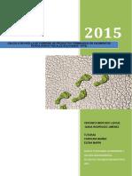 EOI_PFMHuellaPetroleo_2015.pdf