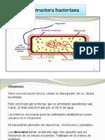 Clase 6a. Esctructura Bacteriana
