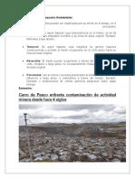 Clasificación de Los Impactos Ambientales