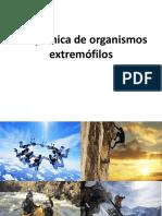 Extrem of Ilo