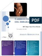 cambiosfisiolgicosdelembarazo-111120224418-phpapp02.pptx