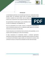 Tectosilicatos PDF