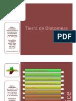 diatomeas (1).pdf