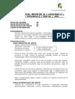 01 Informe Inicial de Brotes.doc