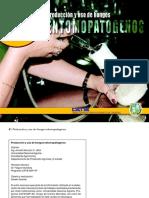 Produccion y uso hongos.pdf