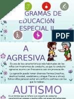 Programas de Educación Especial II