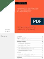 perspectives estimation.pdf