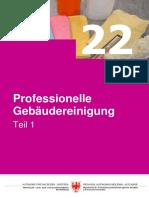 Professionelle Gebaeudereinigung 1 April 2011 Aktualisiert 2012