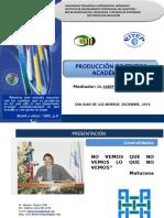 Alberto Rojas - Producción de Textos Académicos Pp73