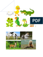 oviparos y mamiferos.docx