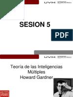 Sesion 5 Estrategias de Aprendizaje y Hd _inteligencias_multiples