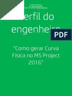 Perfil do engenheiro - Curva S de Avanço Físico.pdf