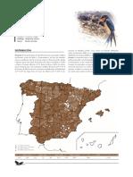golondrina_comun_tcm7-21773.pdf