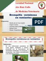 Bronquitis_Verminosa_en_Rumiantes_1_.pptx;filename_=_UTF-8''Bronquitis_Verminosa_en_Rumiantes_(1)[1]