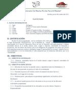 PLAN DE PASEO - Llaclla.doc