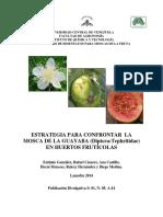 Confrontando la mosca de la GUAYABA (ultima revisión2 ).pdf