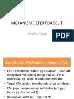 Mekanisme Efektor Sel T