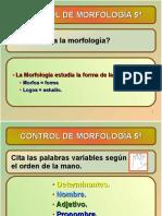 MORFOLOG_A2017