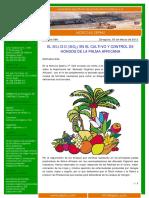Uso Del Silicio en Plantaciones de Palma Africana